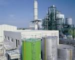 biomasse.jpeg